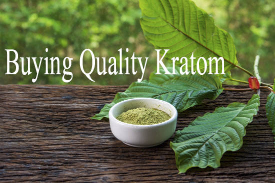 check before Buying Quality Kratom