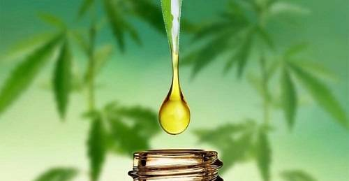 Drops of CBD Oil