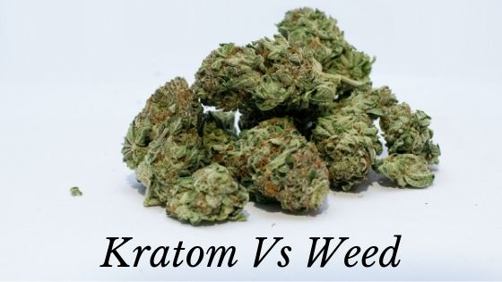 Kratom vs Weed guides