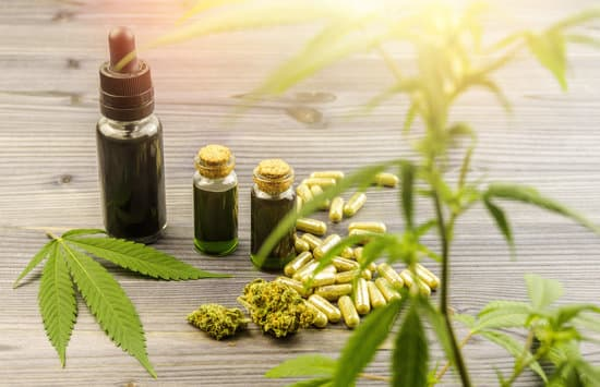 2020 Wholesale CBD Oil Buying Guide
