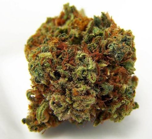 What Is A Harlequin Cannabis Strains
