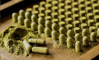 Kratom – Best Bulk Kratom Suppliers Online