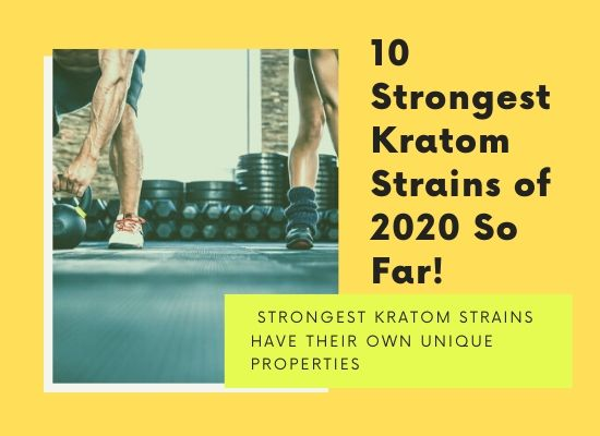 different types of strongest Kratom strains