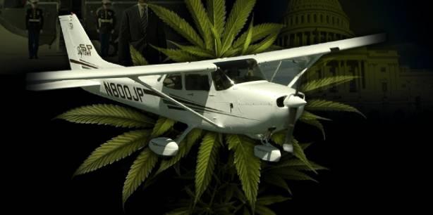 Edibles on Plane