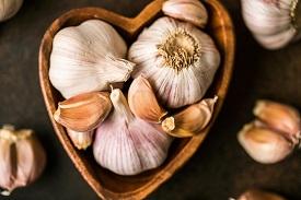 Garlic Immune Boosting Supplements