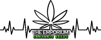 Emporium Cannabis Seeds