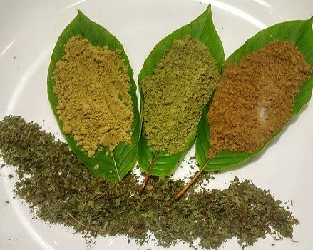 Where to shop Legal Kratom in Canada