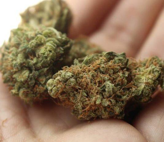 Marijuana Los Angeles